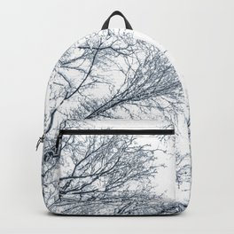 Snow covered top trees, Winter trees crown. Backpack