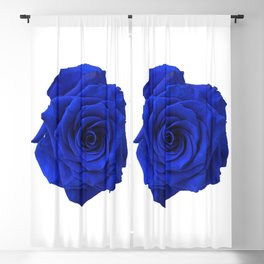 blue rose Blackout Curtain