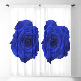 blue rose Blackout Curtain