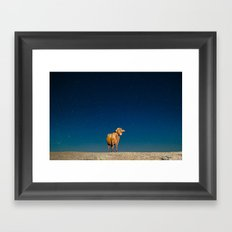 Space Cow Framed Art Print