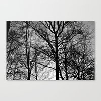 stark Canvas Prints featuring Stark by MLauxDesign