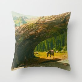Where Only the Seasons Mark the Paths of Time Throw Pillow