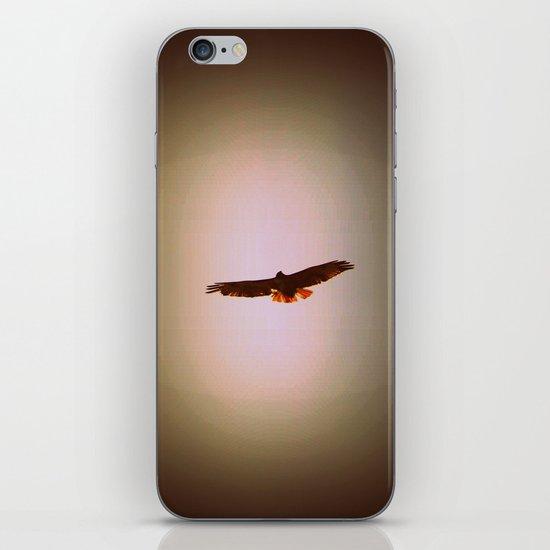 Hawk Eyes II iPhone & iPod Skin