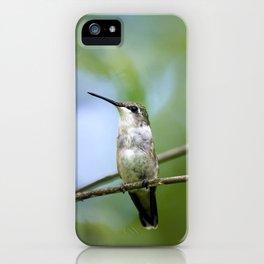 Female Hummingbird iPhone Case