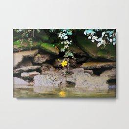 Low Tide On The Riverbank Metal Print
