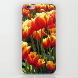 Tulips Are Better Than One iPhone Skin