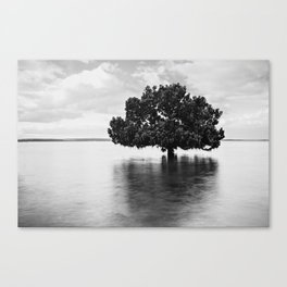 No taps. Canvas Print