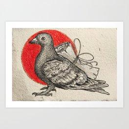 A carrier pigeon Art Print
