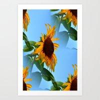 sunflowers Art Prints featuring Sunflowers by Sartoris ART