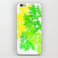 fern iPhone & iPod Skins featuring Fern by Sreetama Ray