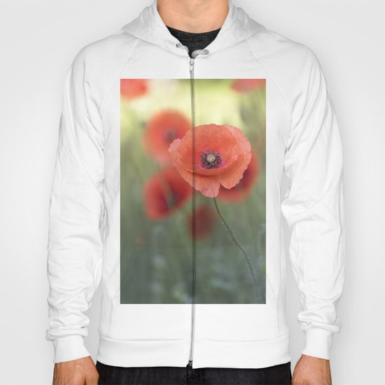 Beautiful poppy in a meadow Hoody