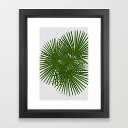 Fan Palm, Tropical Decor Framed Art Print