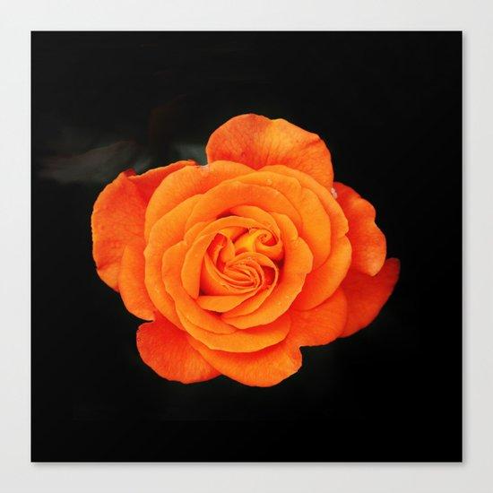 Romantic Rose Orange Canvas Print