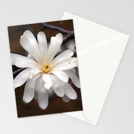 Magnolia I Stationery Cards