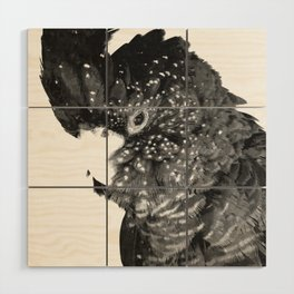 Black and White Cockatoo Illustration Wood Wall Art