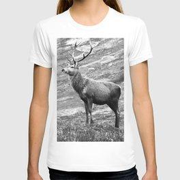 Stag b/w T-shirt
