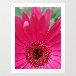 Pinksunburst1 Art Print