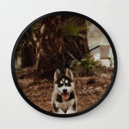 Dog by Cody Board Wall Clock
