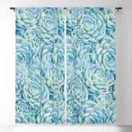 Blue succulents II Blackout Curtain