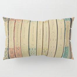 Old Books Pillow Sham