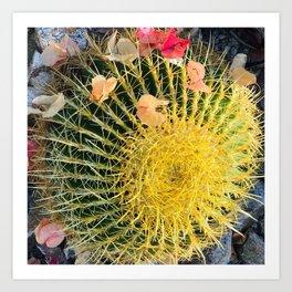 Barrel Cactus With Colorful Flower Petals Art Print