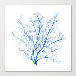 Navy Blue Coral Sea Fan #1 Canvas Print