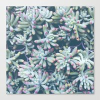 plant Canvas Prints featuring Plant by Unamoric