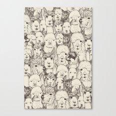 just alpacas natural Canvas Print