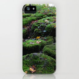 Adventure in the forest iPhone Case