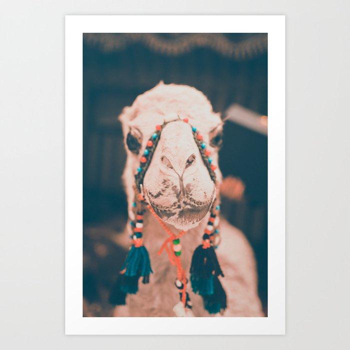 Camel-ing Around.  Art Print