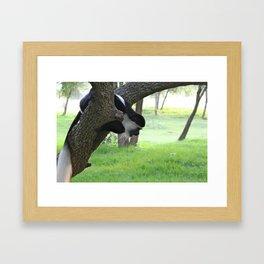 Monkeying Around 4 Framed Art Print