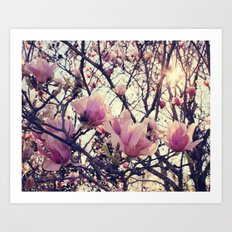 Dreamy Light! Art Print