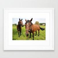 horses Framed Art Prints featuring horses by Falko Follert Art-FF77