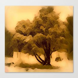 Sepia Juniper Tree by CheyAnne Sexton Canvas Print