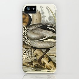 Maned Goose (Bernicla jubata) illustrated by Elizabeth Gould (1804–1841) for John Gould's (1804-1881 iPhone Case