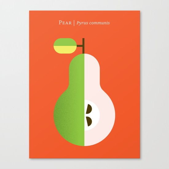 Fruit: Pear Canvas Print