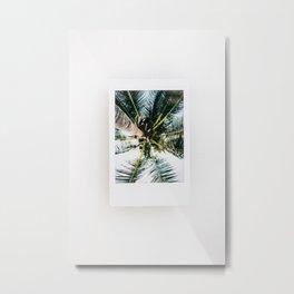 Polaroid Palm Tree Metal Print