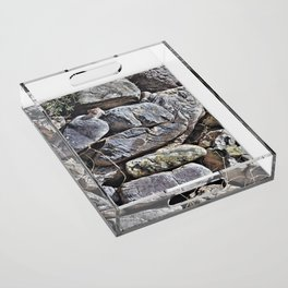 Peekaboo Stoat by Alan M Hunt Acrylic Tray
