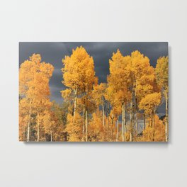 Perfect Golden Autumn Metal Print