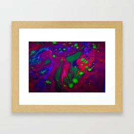 L.S.D. Framed Art Print