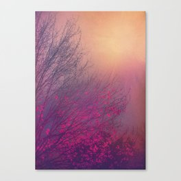 Pink Purple Autumn Dusk Canvas Print
