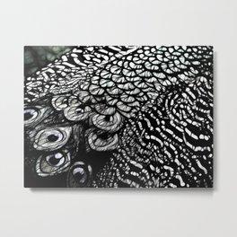 peacock deluxe Metal Print
