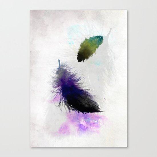 Feathers IV Canvas Print