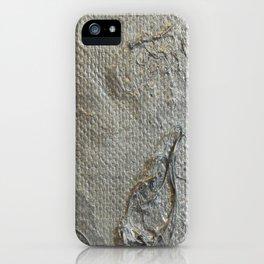 Chrome iPhone Case