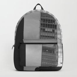 Low Flying Birds Backpack