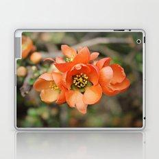 Orange Blossoms Laptop & iPad Skin
