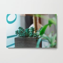 Green Peace Metal Print