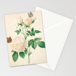 Rose Flower Color Pencil Hand Drawing Stationery Cards