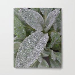Droplets Metal Print