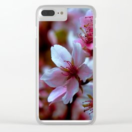 blooming in New england Clear iPhone Case